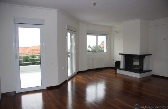 Μονοκατοικία πώληση, παραδίδει μαθήματα αρχιτεκτονικής